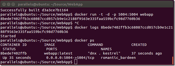 docker-web-run